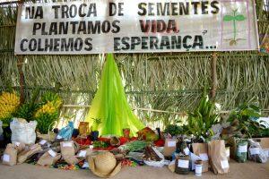 v-festa-da-semente-crioula-1